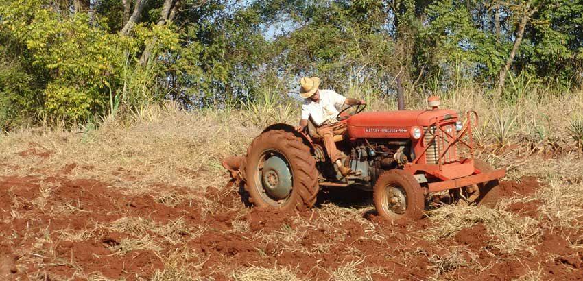 Seguridad laboral en la agrícultura